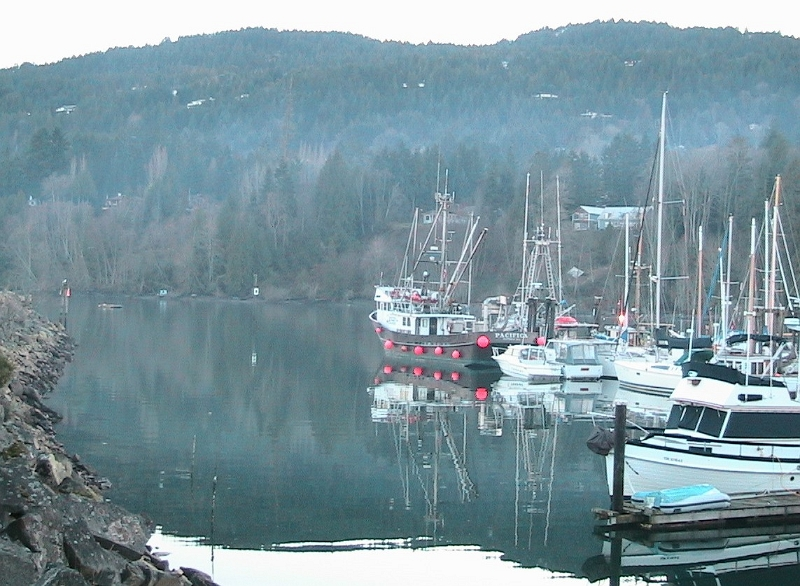 Misty Reflections on Salt Spring Island